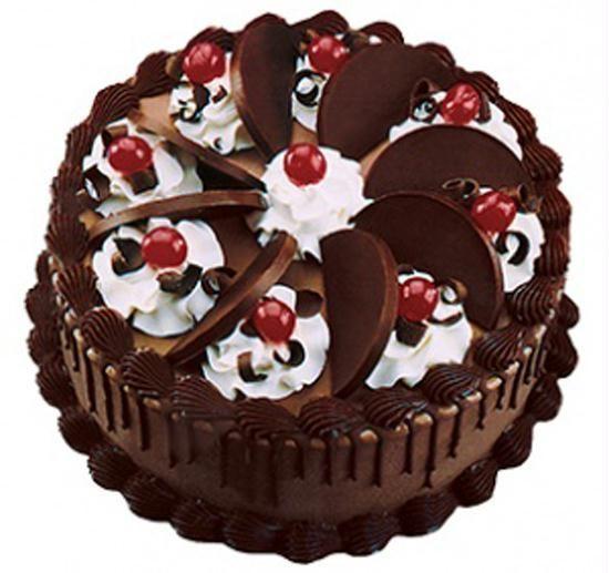 Chocolate Cake Fng